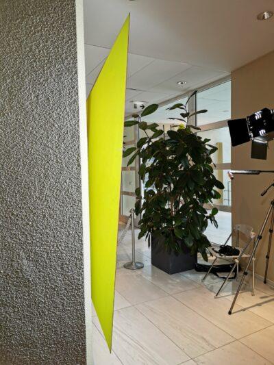 Restauratie hedendaagse kunst, monochrome, Vlaams Parlement